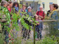 17_Heimliche_Heinzelmaennchen_im_Bauerngarten